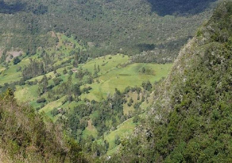 [Comunicado] Parque Naturales Nacionales incumple compromisos con comunidades